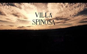 Play the video of Villa Spinosa